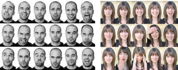 Sinais do Truco. Saiba mais sobre a linguagem da comunicação facial  entre os jogadores.